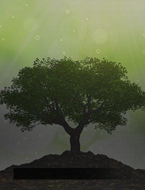 Тренд на «зеленое» мышление