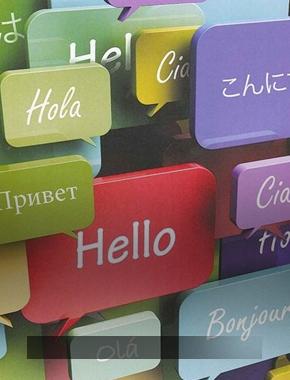 Лингвистическое образование на современном этапе: российский и зарубежный опыт